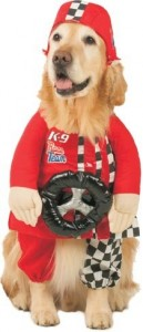 Pet Race Car Driver Dog Costume For Small Dogs